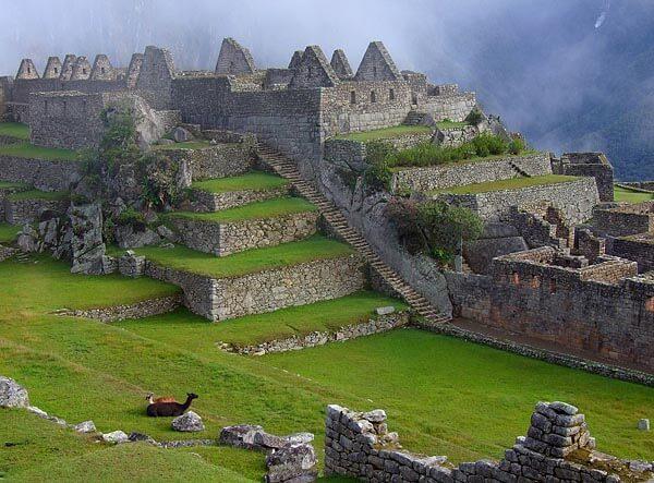 View over central Maccu Picchu