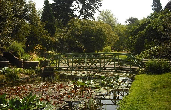 Walking bridge at pond, National Botanical Gardens, Dublin