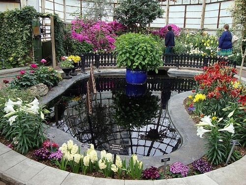 Inside the Lincoln Park Conservatory
