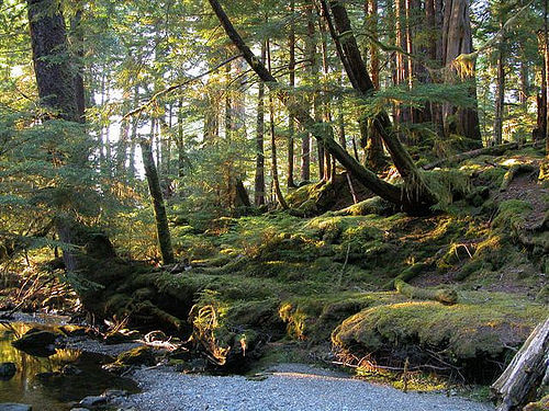 Gwaii Haana National Park, British Columbia, Canada