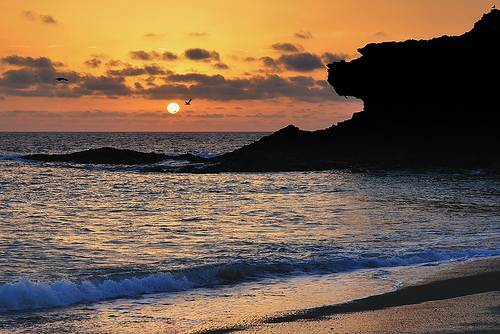 Beach in Fuerteventura at sunset