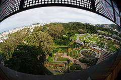 View from the de Young Museum tower