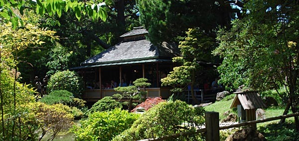 Golden Gate Park's Japansese Tea Garden