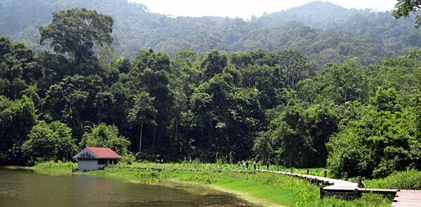 The Thale Ban Park in Thailand