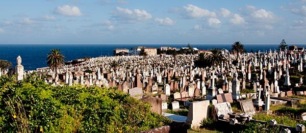 View from Waverley Cemetery