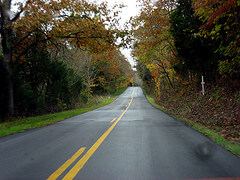 Bluegrass Region