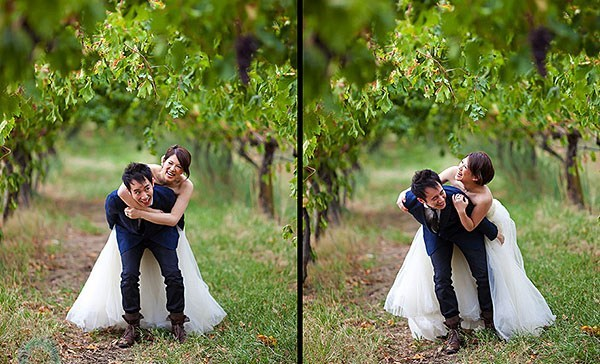 Wedding in a wineyard