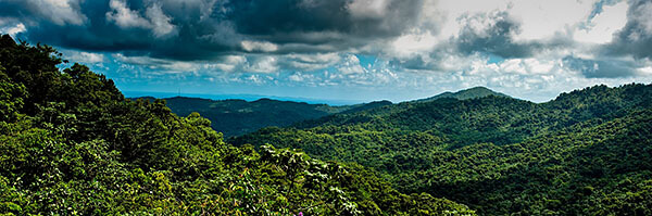 The view over El Yunque rainforest in Puerto Rico