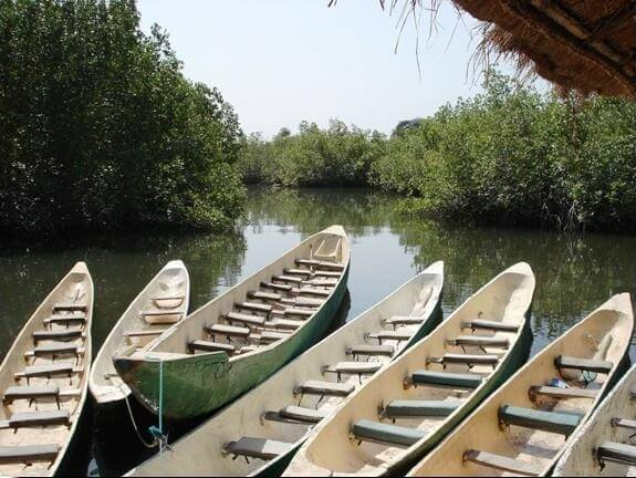Canoes ready for the river