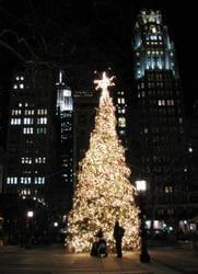 A christmas tree in New York City