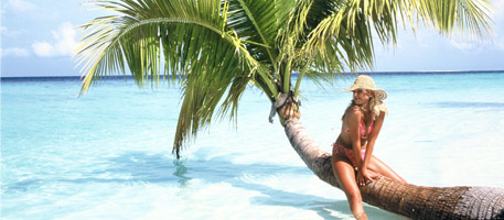 Don't be scammed out of your tropical dream vacation
