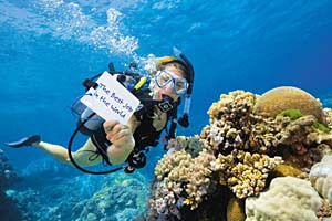 Best job in the world, diving the Great Barrier Reef