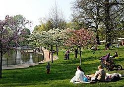Volkspark Friedrichshain Berlin