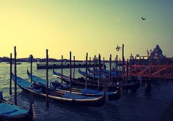Venice is... by dhammza