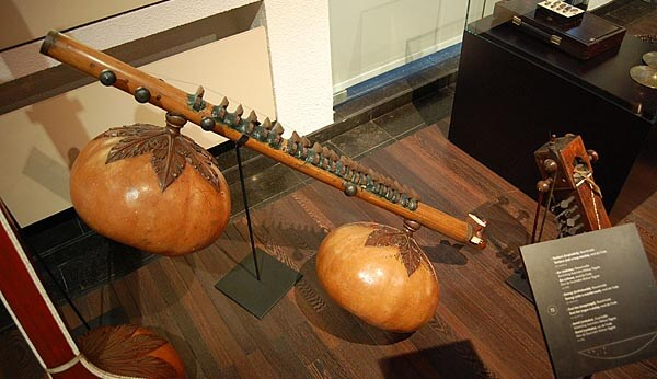 Gourd instrument at MIM, Brussels