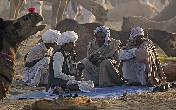 Camel sellers at the Pushkar Fair in Rajastan
