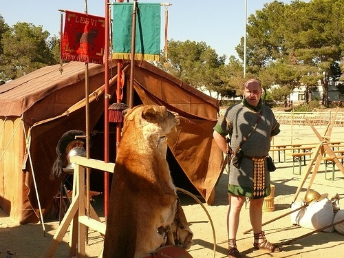 Historical Roman re-enactment with Roman soldier outside a tent with a bear skin cape