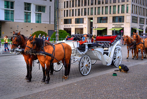 Horse and carriage near Brandenburger Tor in Berlin.