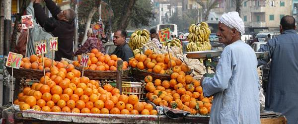A market seller in Cairo